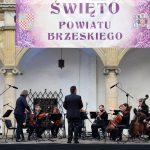 Orkiestra - artyści z instrumentami smyczkowymi